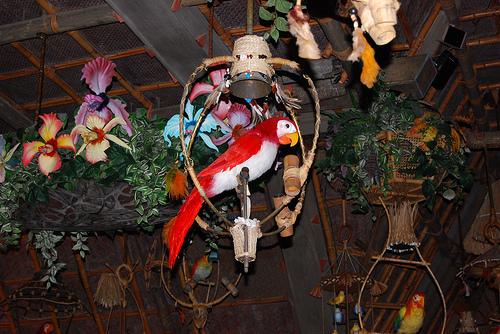 Magic Kingdom - Walt Disney World  15389110