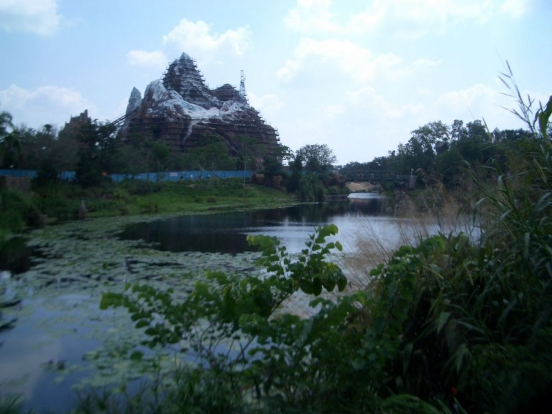 Disney's Animal Kingdom à Walt Disney World Resort Ak-new10
