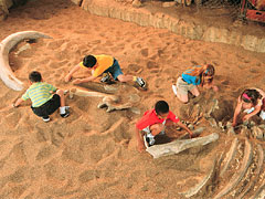 Disney's Animal Kingdom à Walt Disney World Resort Boneya10