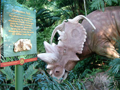 Disney's Animal Kingdom à Walt Disney World Resort Cretac10