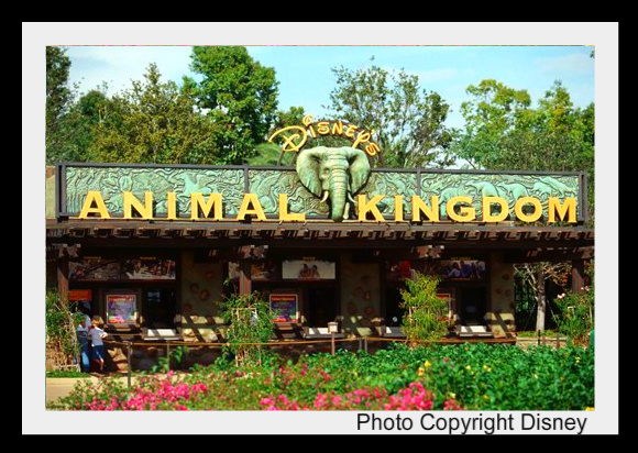 Disney's Animal Kingdom à Walt Disney World Resort Dak-en11