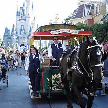 Magic Kingdom - Walt Disney World  Disney23