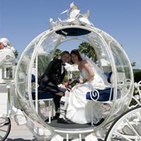 Disney's Fairy Tale Weddings Dyn01013