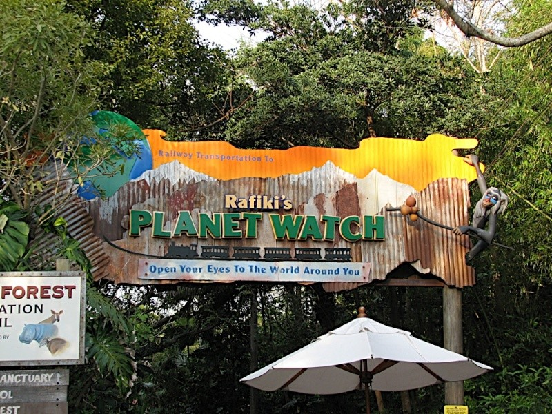 Disney's Animal Kingdom à Walt Disney World Resort Img_2010