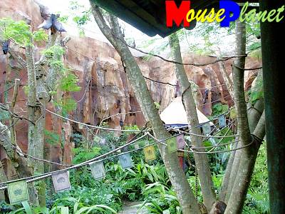 Disney's Animal Kingdom à Walt Disney World Resort Mahara21