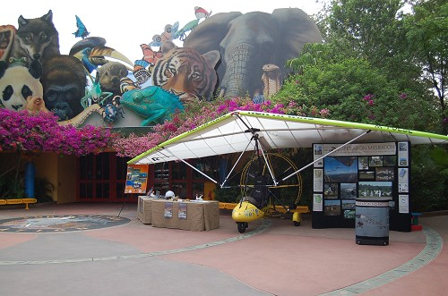 Disney's Animal Kingdom à Walt Disney World Resort New_im10