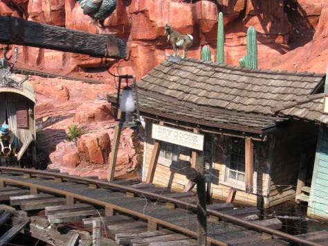 Magic Kingdom - Walt Disney World  P4234510