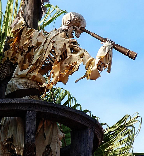 Magic Kingdom - Walt Disney World  Pirate14