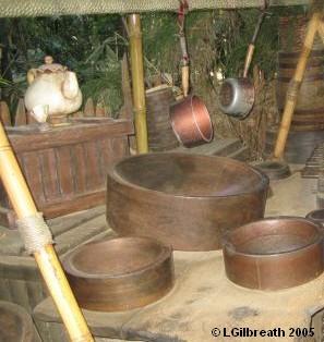 Magic Kingdom - Walt Disney World  Tree310