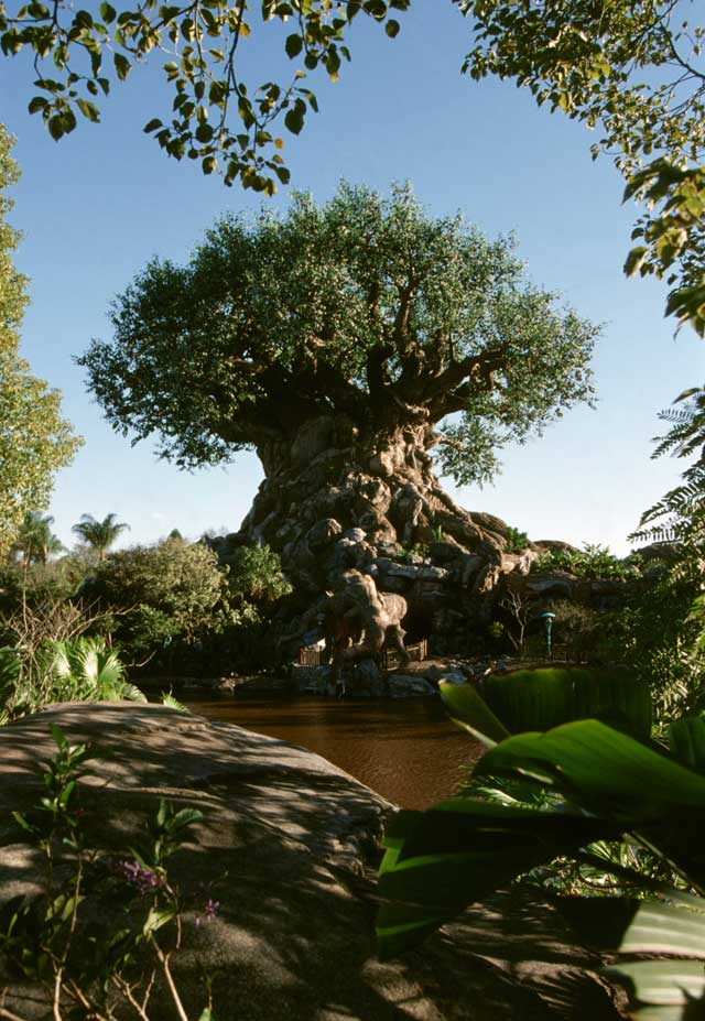 Disney's Animal Kingdom à Walt Disney World Resort Treeof11
