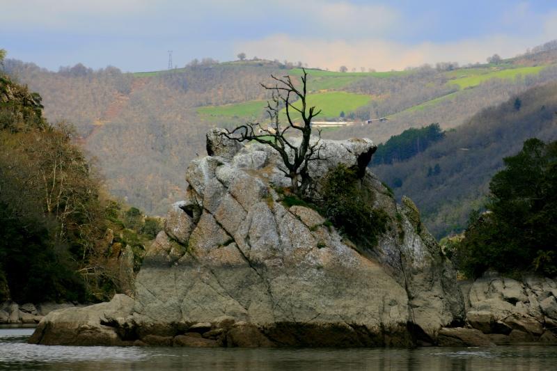 barrage attitude! by le Max Img_8812