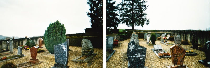Photo au cimetière 1110