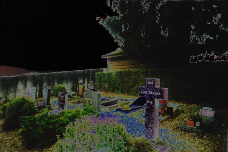 Photo au cimetière 1810
