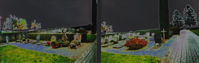 Photo au cimetière 810