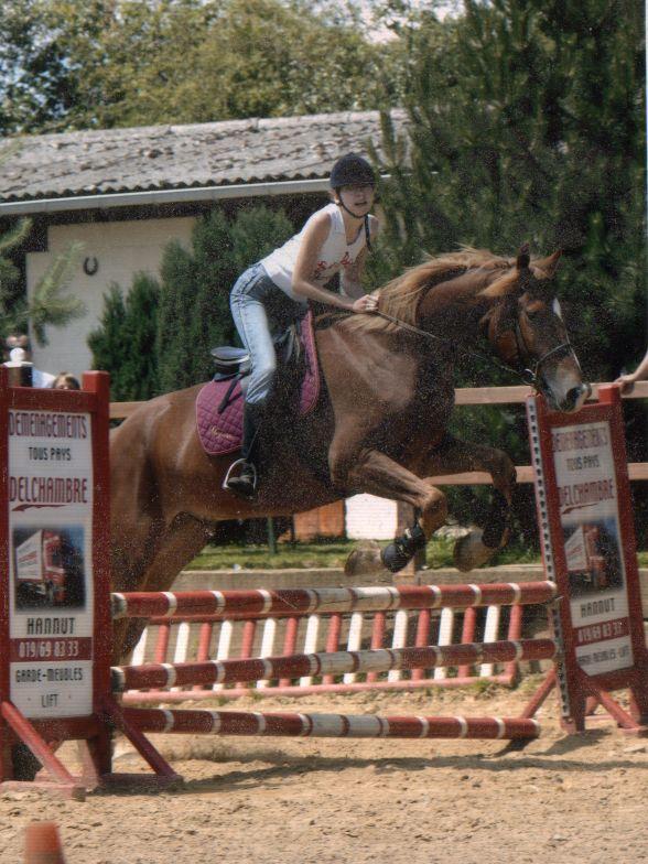 Le cheval dans toute sa splendeure - Vidéo Jump0310
