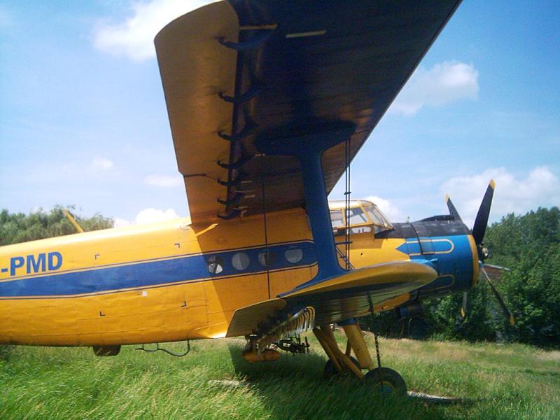 Antonov An-2 - Pagina 6 Dsci0318