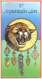 Medicine Cards - Découvrir son animal Totem ! 17-mou10