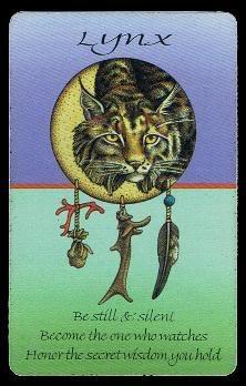 Medicine Cards - Découvrir son animal Totem ! Lynx10