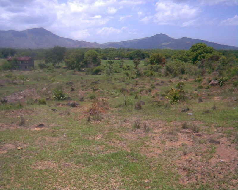 Development of 35 Hectares for Residential Dwelling (for Aetas and Local Farmers), Botolan, Zambales Kodak010
