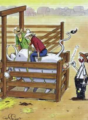 des vaches à gogos Vache111
