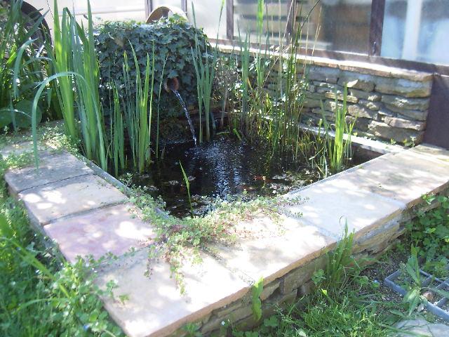 un petit bassin fontaine par alain34 Bassin11