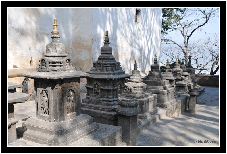 Népal - Novembre 2010 Yd0_9365