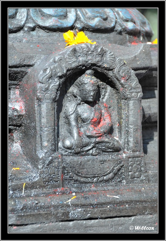 Népal - Novembre 2010 Yd0_9368
