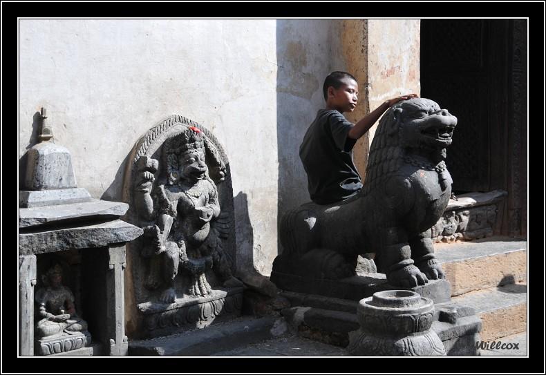 Népal - Novembre 2010 Yd0_9369