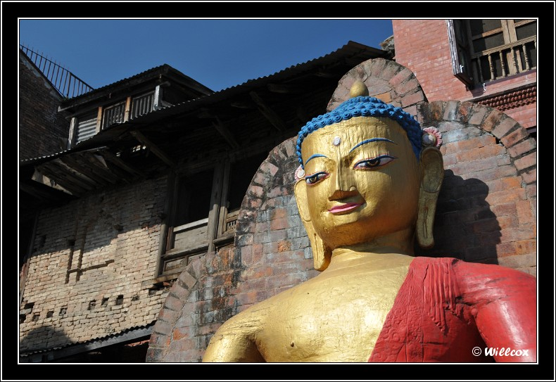 Népal - Novembre 2010 Yd0_9370