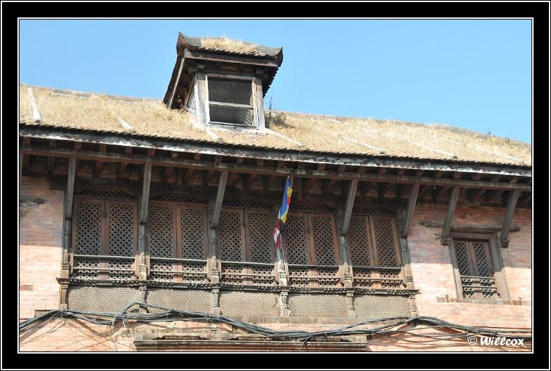 Népal - Novembre 2010 Yd0_9374