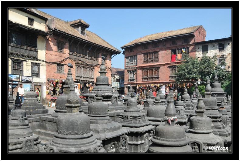 Népal - Novembre 2010 Yd0_9375
