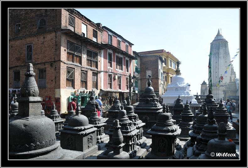 Népal - Novembre 2010 Yd0_9379