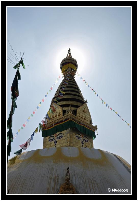 Népal - Novembre 2010 Yd0_9410