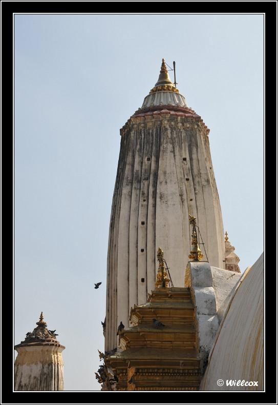 Népal - Novembre 2010 Yd0_9415