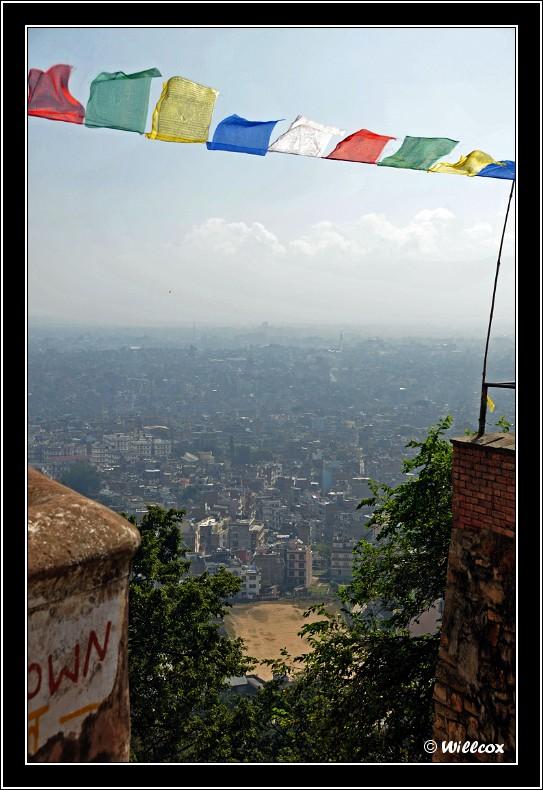 Népal - Novembre 2010 Yd0_9421
