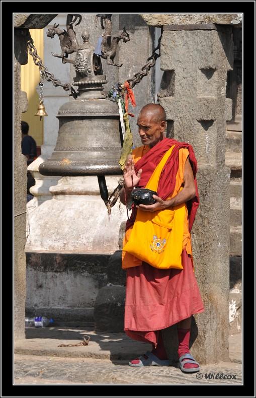 Népal - Novembre 2010 Yd0_9425