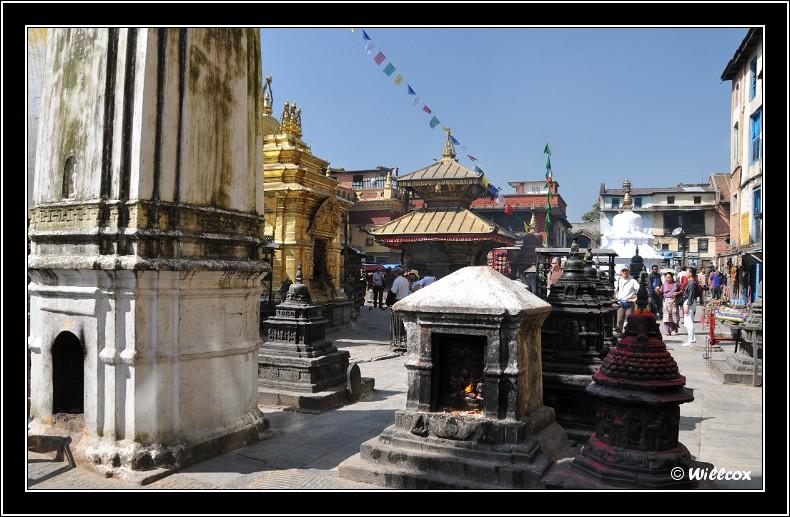 Népal - Novembre 2010 Yd0_9426