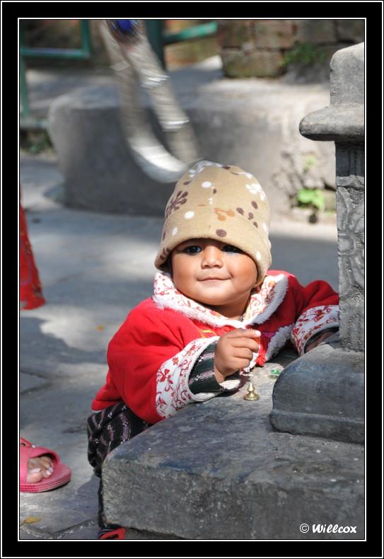 Népal - Novembre 2010 Yd0_9428