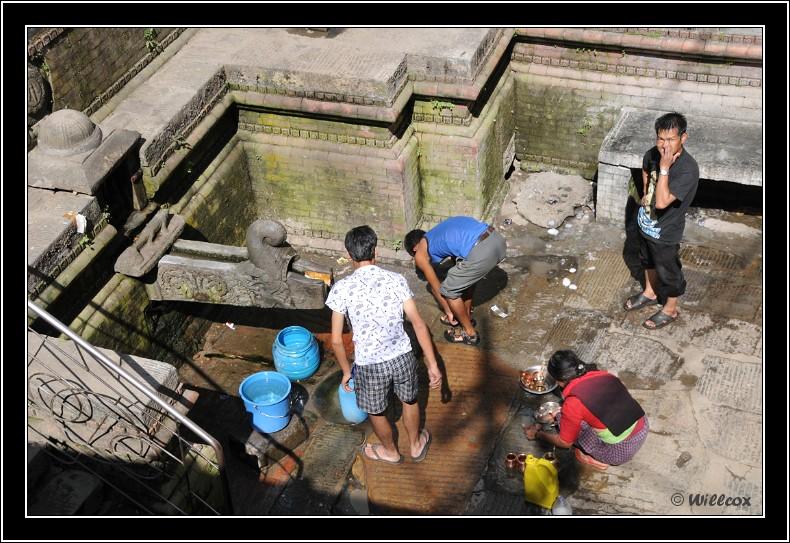 Népal - Novembre 2010 Yd0_9432