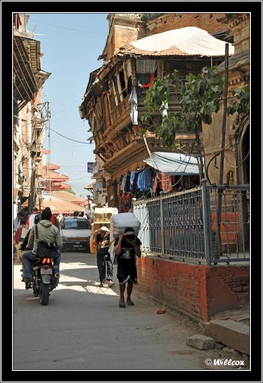 Népal - Novembre 2010 Yd0_9435
