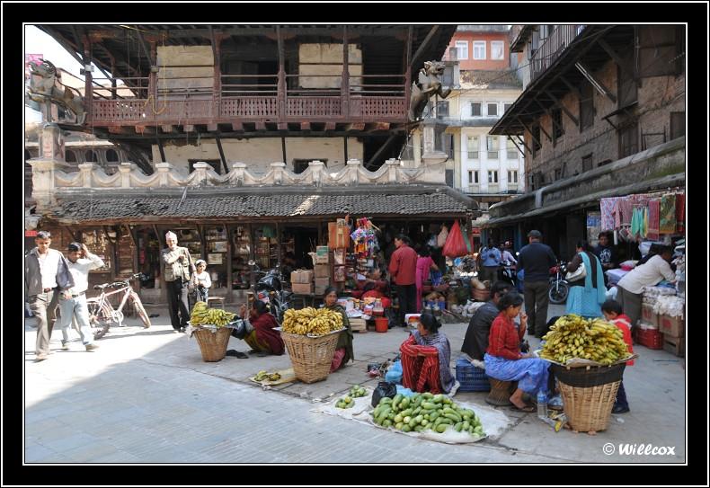 Népal - Novembre 2010 Yd0_9436