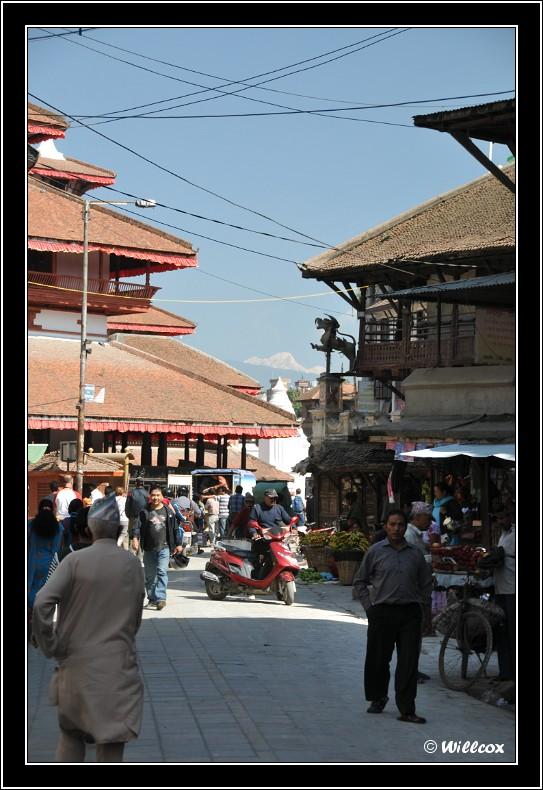 Népal - Novembre 2010 Yd0_9438