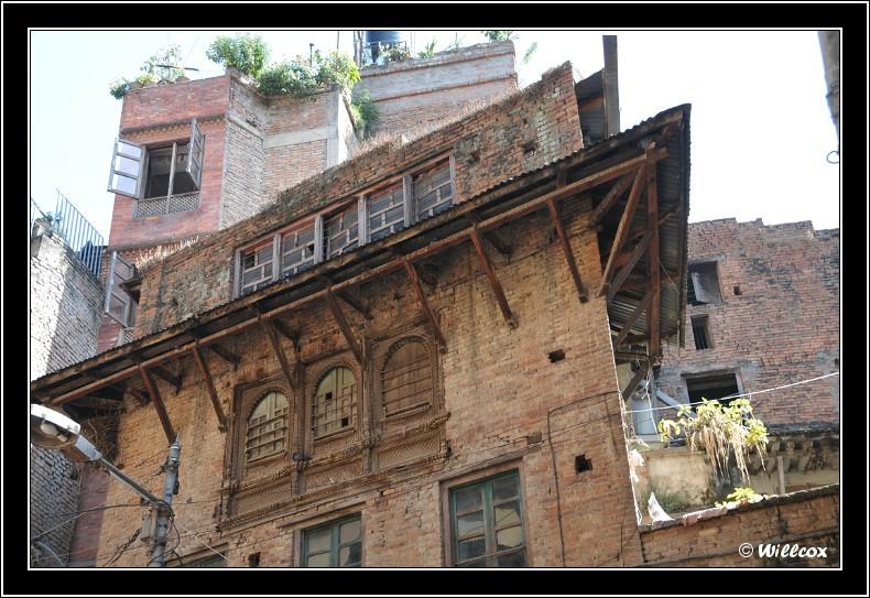 Népal - Novembre 2010 Yd0_9439