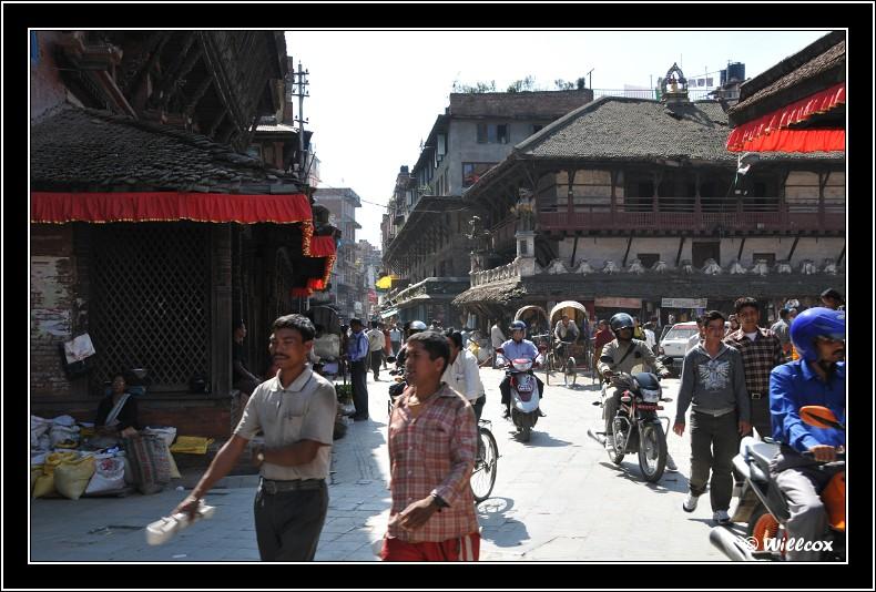 Népal - Novembre 2010 Yd0_9441