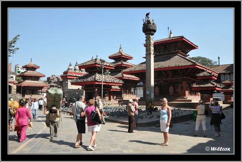 Népal - Novembre 2010 Yd0_9444