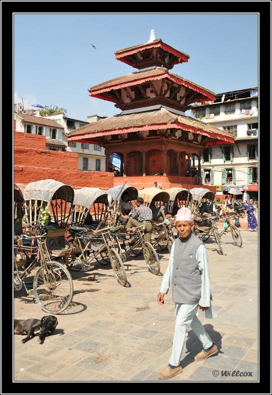 Népal - Novembre 2010 Yd0_9446