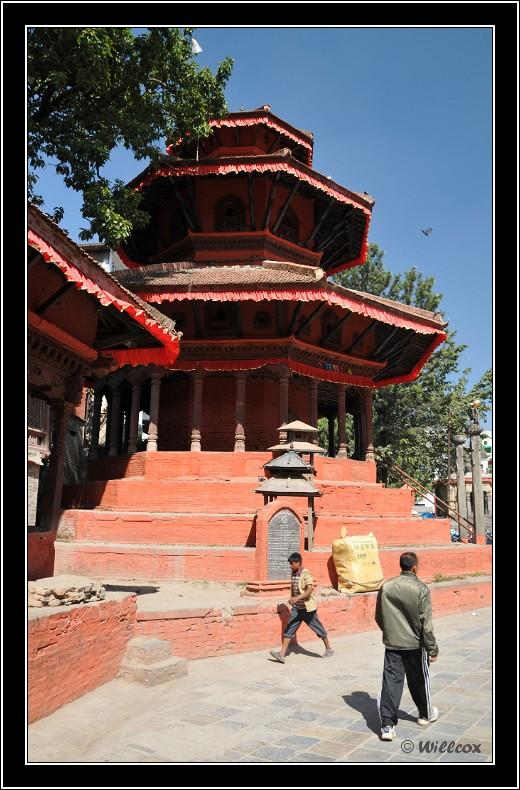 Népal - Novembre 2010 Yd0_9450
