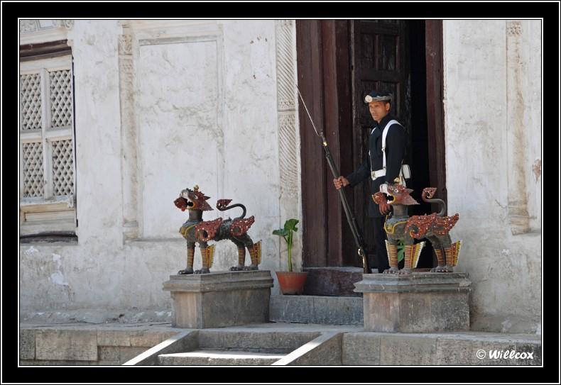 Népal - Novembre 2010 Yd0_9523
