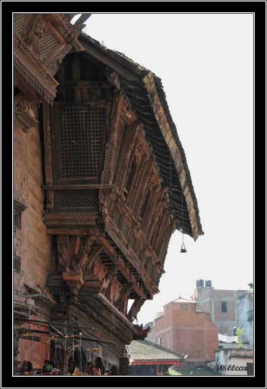 Népal - Novembre 2010 Yd0_9527