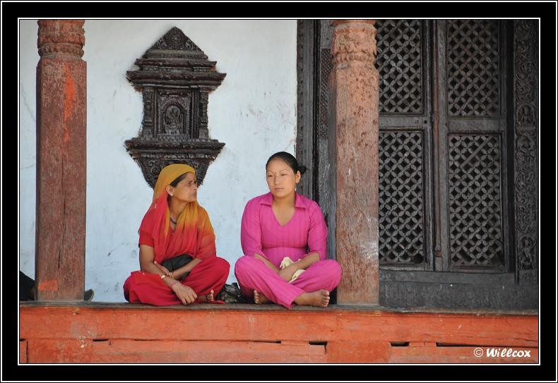 Népal - Novembre 2010 Yd0_9528